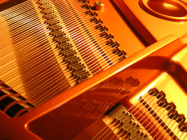 chordophone instruments African music