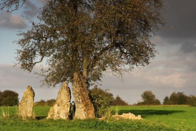 druid place